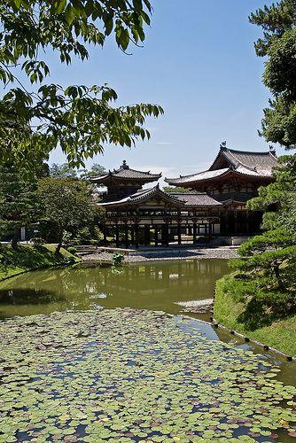 Uji Byodoin #japan #kyoto