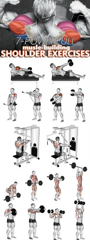 The four Finest Workout routines To Create 3D Shoulders