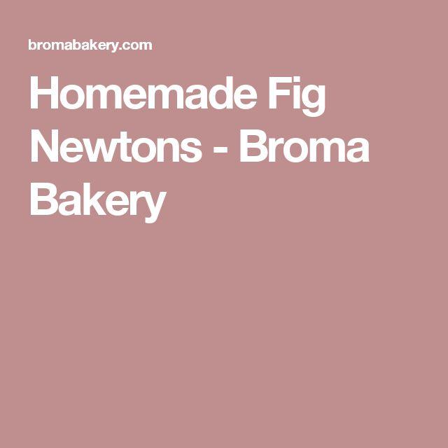 Homemade Fig Newtons - Broma Bakery