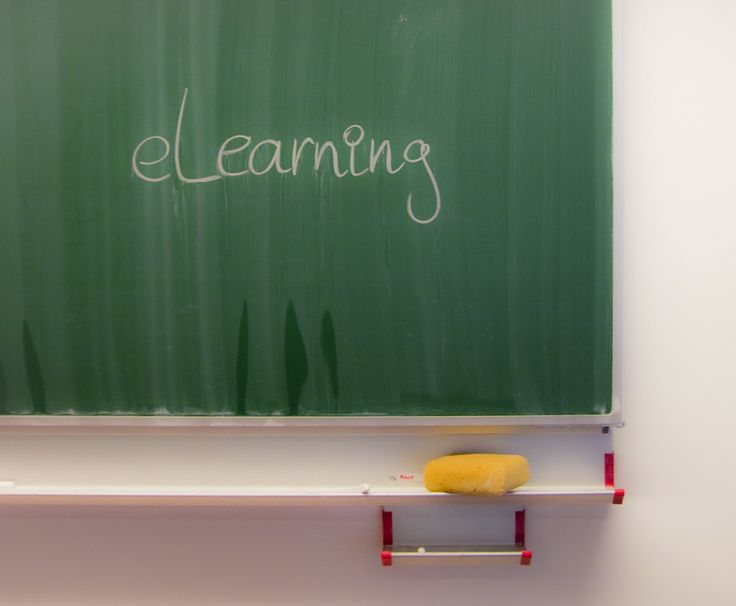 E-learning increases your blogging net worth.