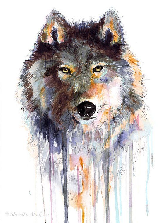 Grauer Wolf Aquarell Druck Von Slaveika Aladjova Kunst Tier