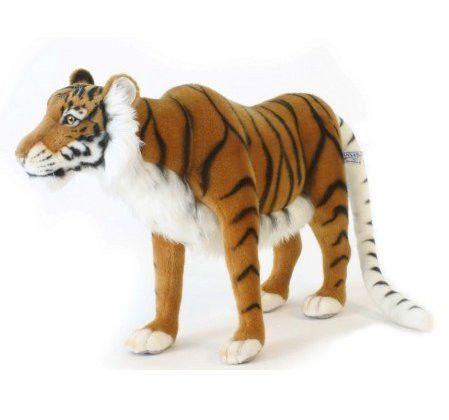 """""""Gypsy"""" Caspian Tiger"""