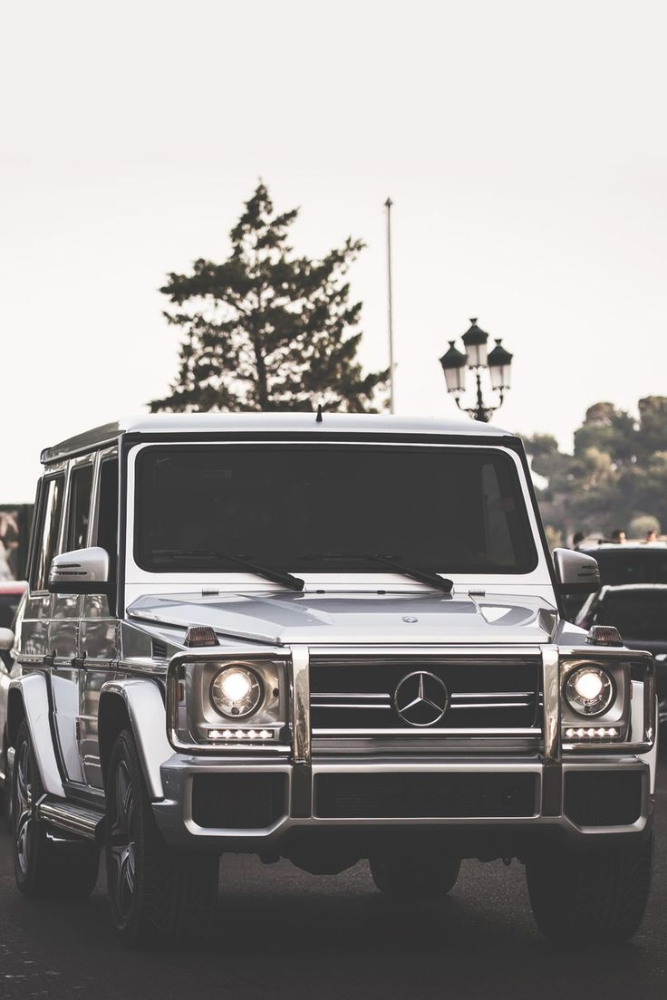 Boss. | Photographer