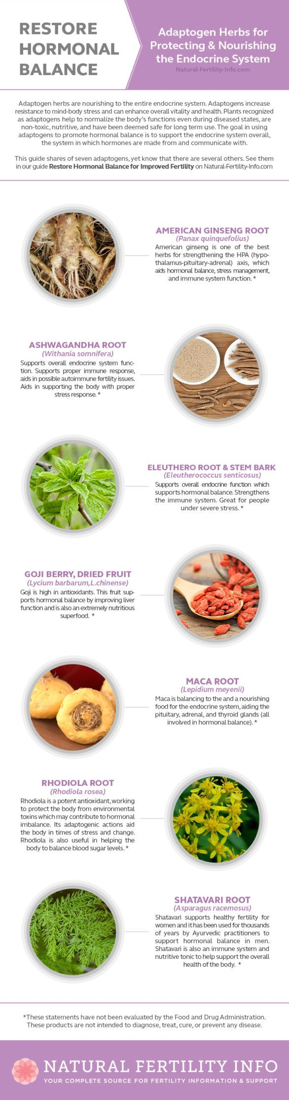 Restore Hormonal Balance: Adaptogen Herbs for the Endocrine System