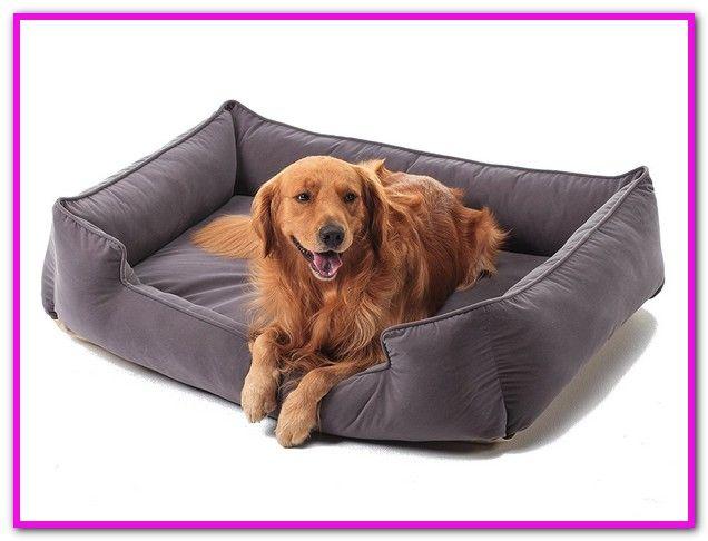 Petfusion Dog Bed Amazon Petfusion Large Dog Bed W Solid 4 Memory Foam Waterproof Liner Ykk Premium Zippers Orthopedic Dog Bed Dog Bed Dog Bed Furniture