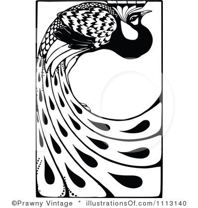 Peacock Clipart Illustration by Prawny Vintage - Stock Sample #1113140