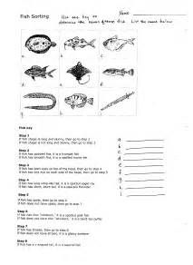fish dichotomous key activity - Results For Yahoo Image ...