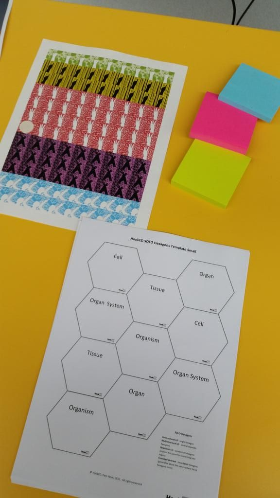 """Steve Mouldey on Twitter: """"Rose, Bud, Thorn post its and #SOLOTaxonomy stickers and hexagons ready. @MrHuggard & I ready to go! #edchatnz http://t.co/0KSYrbdQG1"""""""