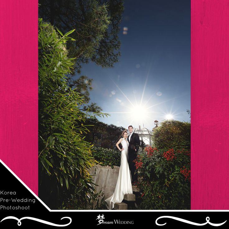 V neckline wedding gown Long wedding gown