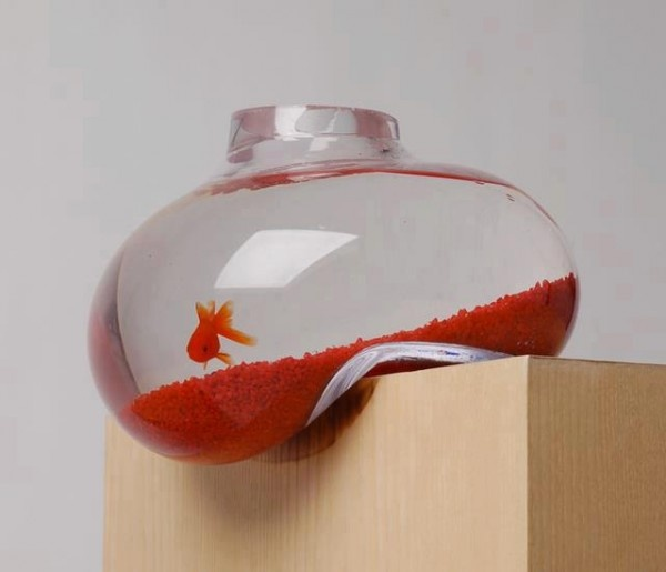 """This beautiful """"Bubble Tank"""" that's about to fall off the table was created by Sheffield-based design studio Psalt Design. The design makes looking at fish just a little bit more fun. We love the design that will be an eye catcher in your house. Although it does not look very stable it is very. The designers have made sure it is. Made from premium glass, handblown and slumped by a master glassblower each tank has it's own unique form and individual characteristics."""