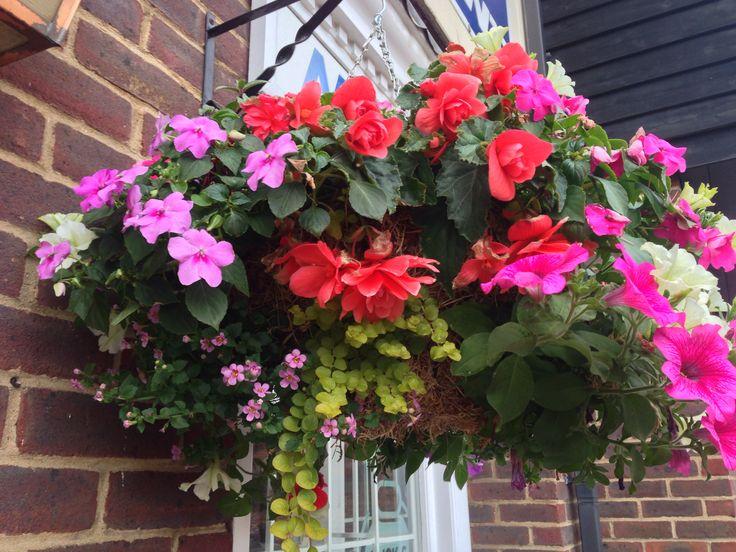 Hanging baskets in Saffron Walden town centre. Summer 2013 www.billflowers.co.uk
