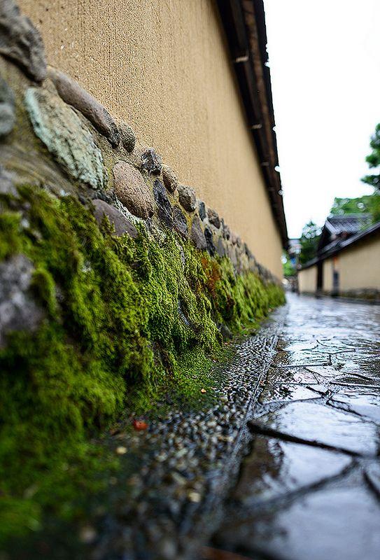 Strolling Kanazawa, Ishikawa, Japan