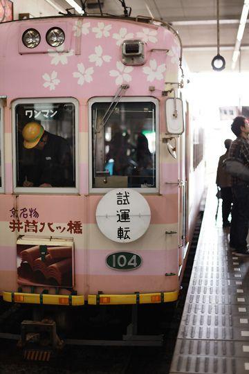 Train wrapped in Sakura - Kyoto, Japan