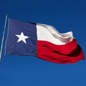 Image result for texas flag 300 x 300