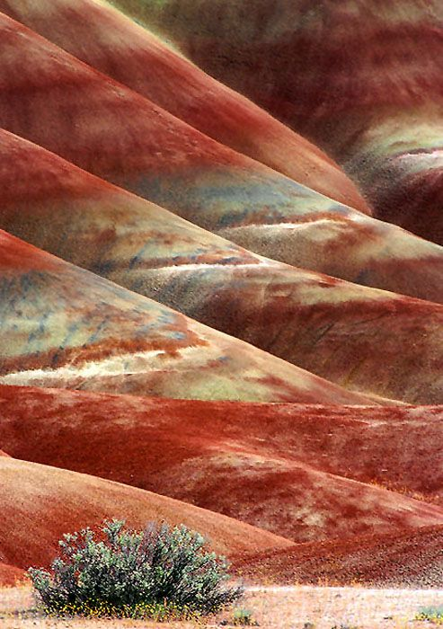 The Painted Hills, Eastern Oregon
