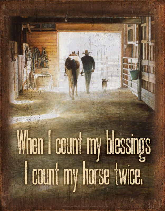 """When I count my blessings, I count my horse twice."" With the help of a talented wildlife artist and a catchy saying, it's easy to express yourself perfectly. Vivid graphics make these tin signs great"