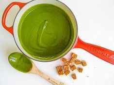 Recipe Search Results   Healthy Blender Recipes