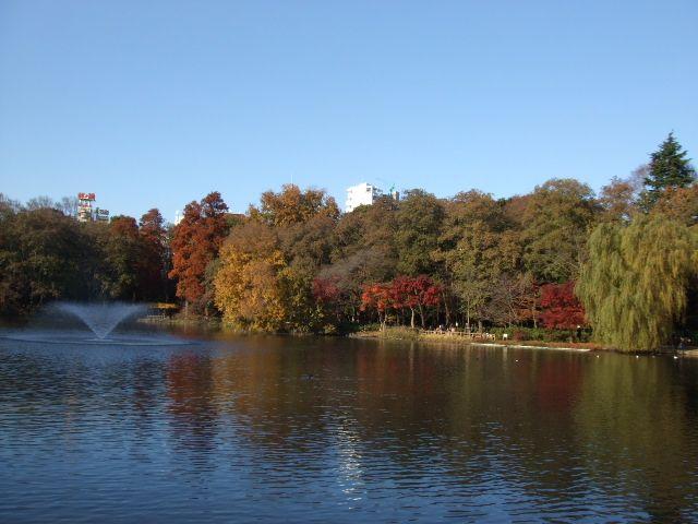 Inokashira Park 井の頭恩賜公園