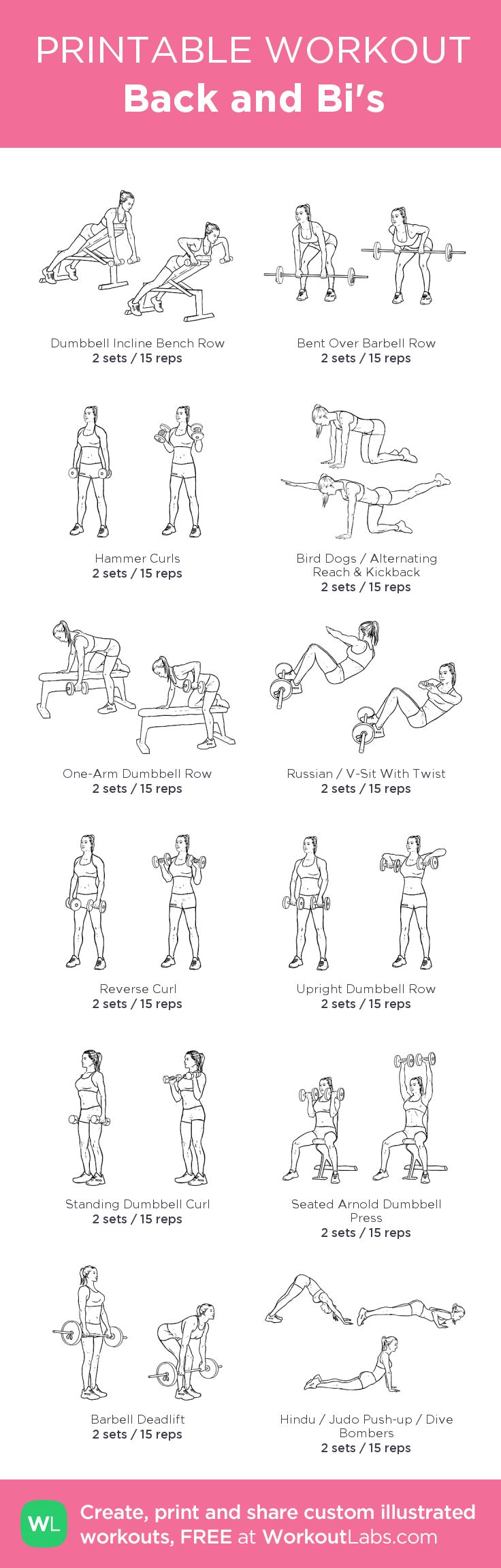 Back and Bi's: my visual workout created at WorkoutLabs.com