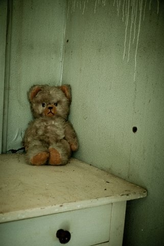A child's forgotten Teddy: