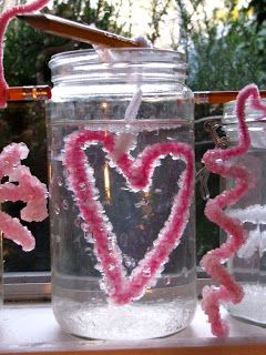 Grow a crystallized heart- fun Science for kids