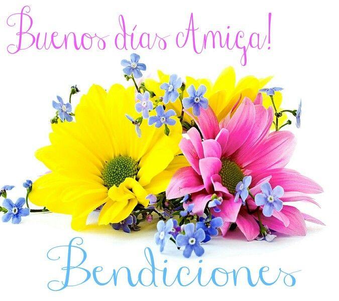 Good Morning Everyone Que Significa : Buenos días amiga bendiciones amistad pinterest