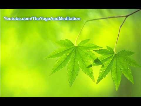 Meditation Music - Relaxation Music for Stress Relief and Healing Medita...