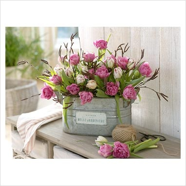 Like the flowers in the tin bucket. - fake tulips in tin on top of kitchen cabinets?