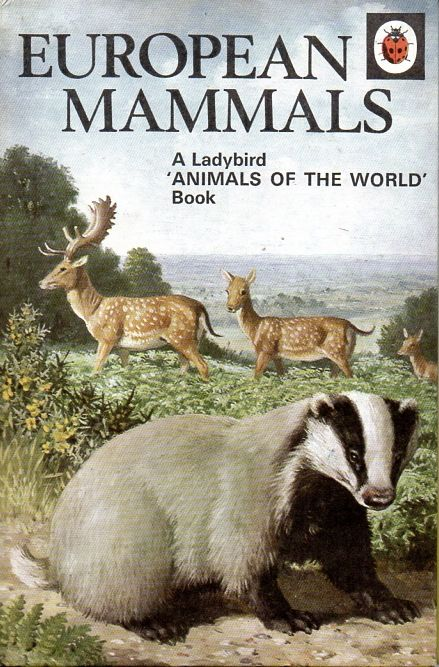ladybird book covers - Bing Images