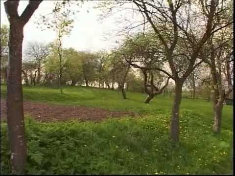 Erdélyi János - A szenvedelmes kertész (Régi erdélyi almák II.) [2003]