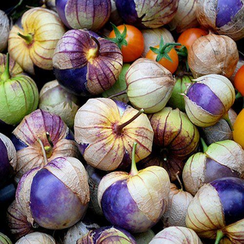 Purple tomatillos: Apples Dump Cakes, Purple Tomatillos, Gardens, Seeds, Purple Milpa, Salsa Recipes, Figs, Caramel Apples, Tomatillo Purple