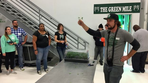 Tour operator Mike Eymer speaks to cannabis tourists in Colorado