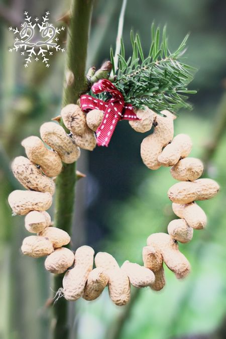 a peanut wreath for the birds