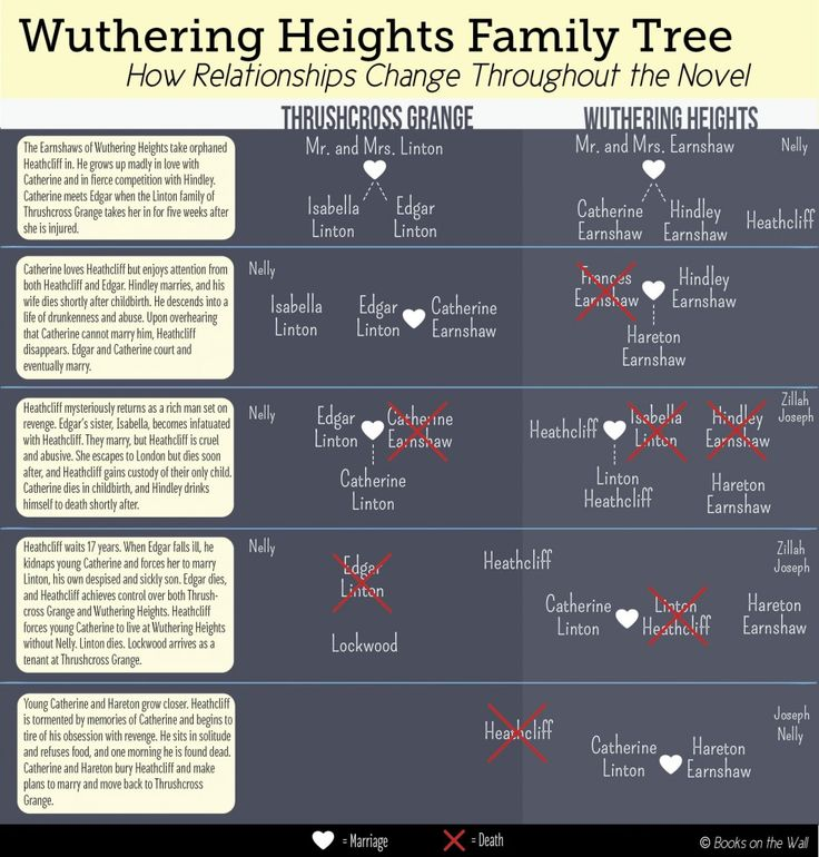 an analysis of heathcliff a character in the novel wuthering heights by emily bronte That emily bronte and i just can't care about a book where i actually hate the characters visits his landlord mrheathcliff, at wuthering heights.