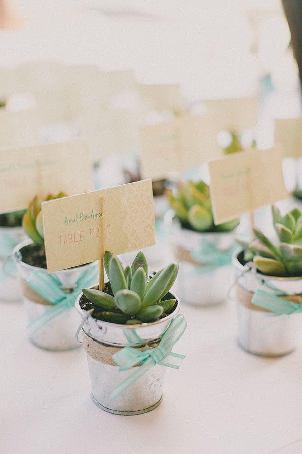 mint + succulents... adorable favors! http://nashville.wedding101.net/
