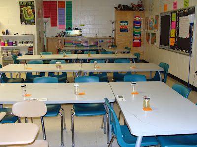 Making It As A Middle School Teacher: Science Saturday ~ Animal Specimen Lab & a Freebie