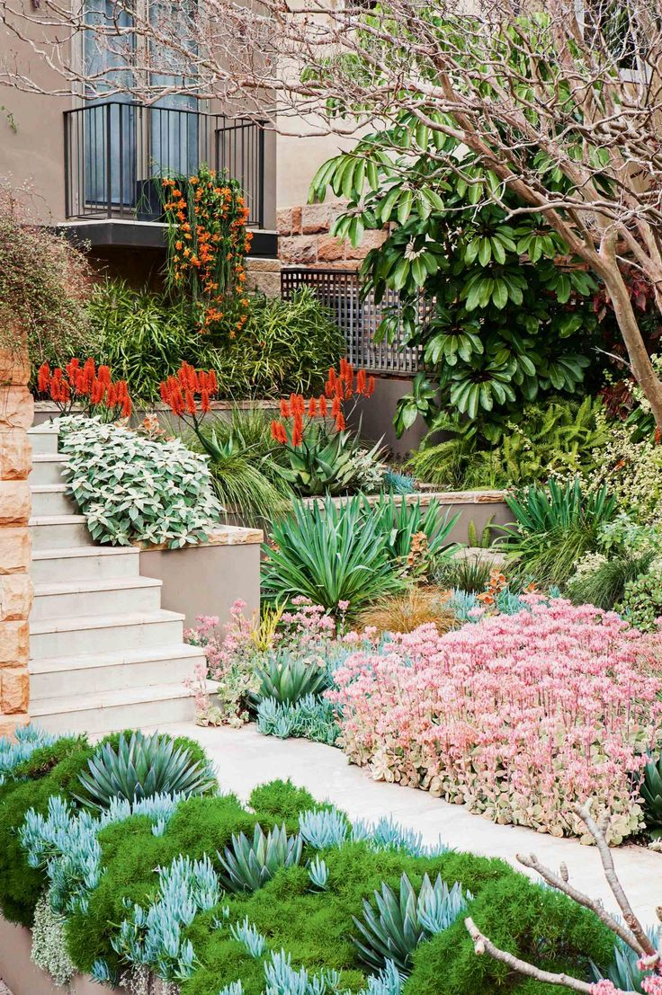 Enviable entrance gardens from insideout.com.au. Photography by Michael Wee.