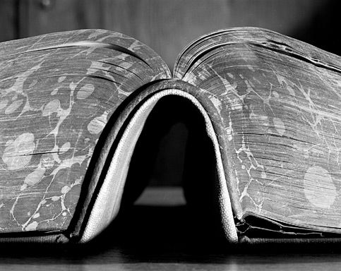 My pleasure books abelardo morell