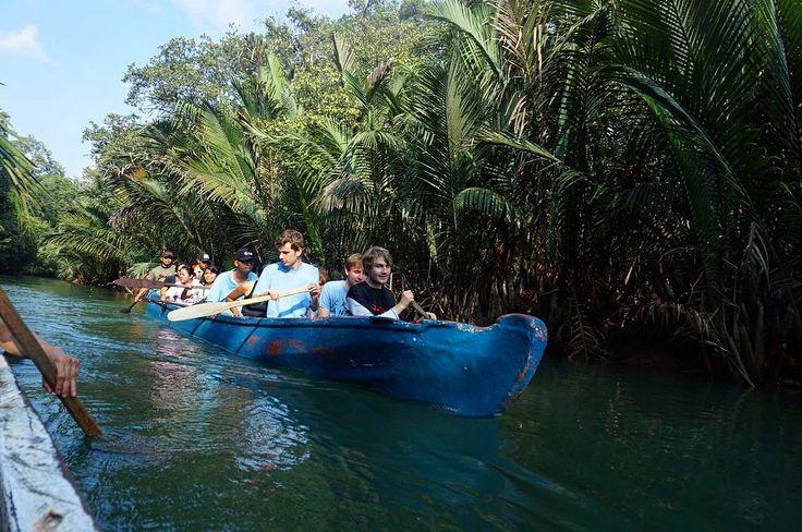 Selain snorkeling, aktivitas yang seru dilakukan ketika kamu berkunjung ke Ujung Kulon adalah canoing di Sungai Cigenter, Pulau Handeleum.   Next Trip Ujung Kulon : 25 – 27 Agustus 29 September – 01 Oktober 27 – 29 Oktober 17 – 19 Nopember  30 Nopember – 2 Desember 22 – 24 Desember  Itinerary >> http://bit.ly/OpenTripUjungKulon-TNUK  For details/reservation /private trip arrangement please mail to  tuk4ng.jalan@gmail.com . . WA : 087808116852 / 085810697553 Line : @tukangjalan
