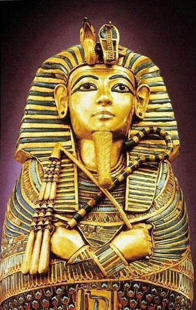The Curse Of King Tuts Tomb Torrent: 1000+ Images About Egypt On Pinterest