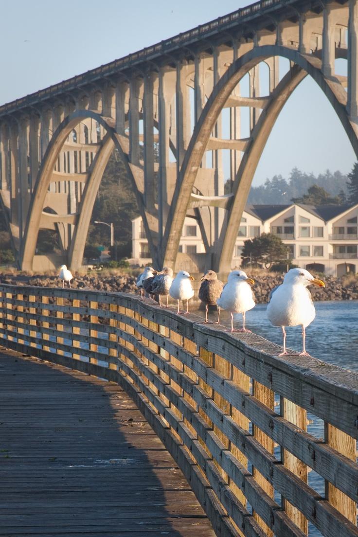 Newport Oregon Public Fishing Pier