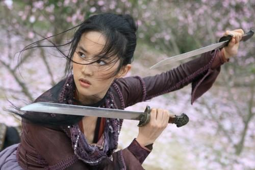 Still Of Yifei Liu In The Forbidden Kingdom