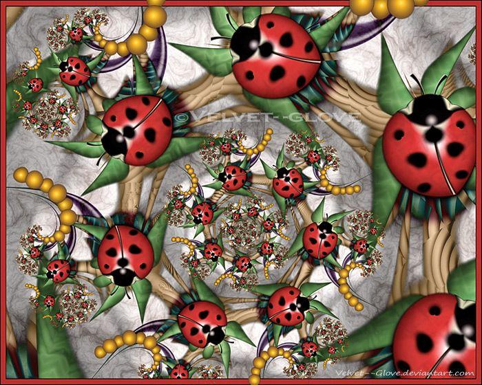 lady bug fractal