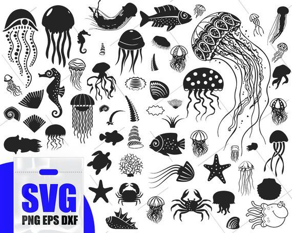 Pin On File For Cutting Svg Png Dxf Eps Vector Silhouette Monogram Print