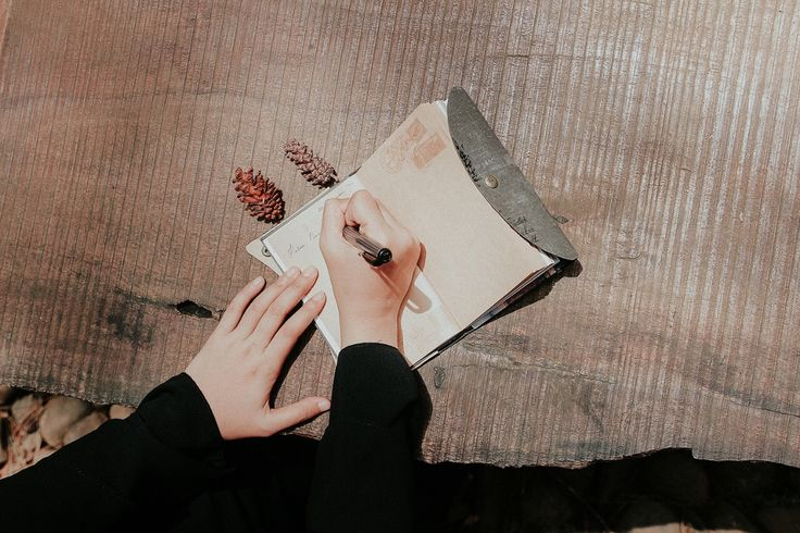 Writing diary in the pine forest