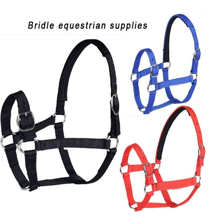Top quality Horse bridle saddleries equestrian supplies adjustable Multi-color multi-size Nylon Horse Bridle Halter