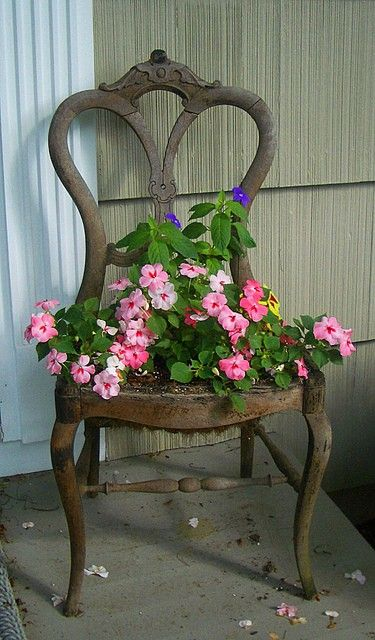 Old chair turned into flower pot