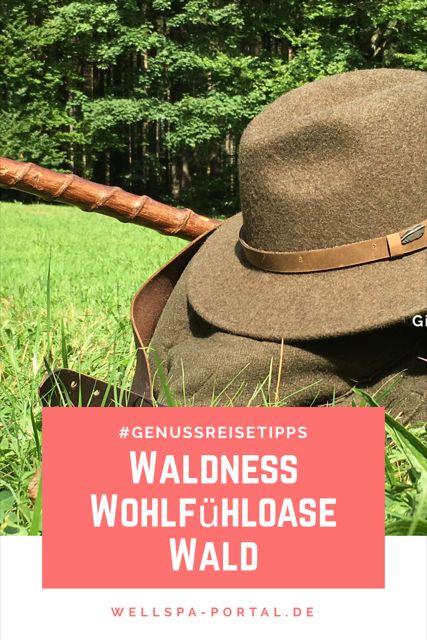 Waldness Wohlfühloase Wald. Urlaub in dem Natur auf eine besondere Art erlebbar wird. Im Almtal, Oberösterreich, entdeckst du die Heilkraft des Waldes. Ob beim Waldbaden, der Waldmassage, Kneippen, Wyda, auf Kräuterwanderungen oder in der Waldschule. Eintauchen in die Atmosphäre des Waldes bei Waldness im Almtal. Mein persönlicher Genussreisetipp für eine ganz andere Art Digitales Detox. WellSpa-Portal meets Waldness :-)