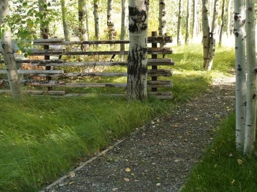 Fence | Reminds me of Mom & Grandma & Grandpa's house.