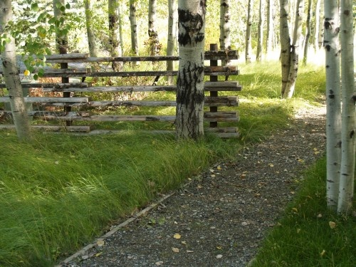 28 best images about rustic gates and fences on pinterest for Garden gate designs wood rustic